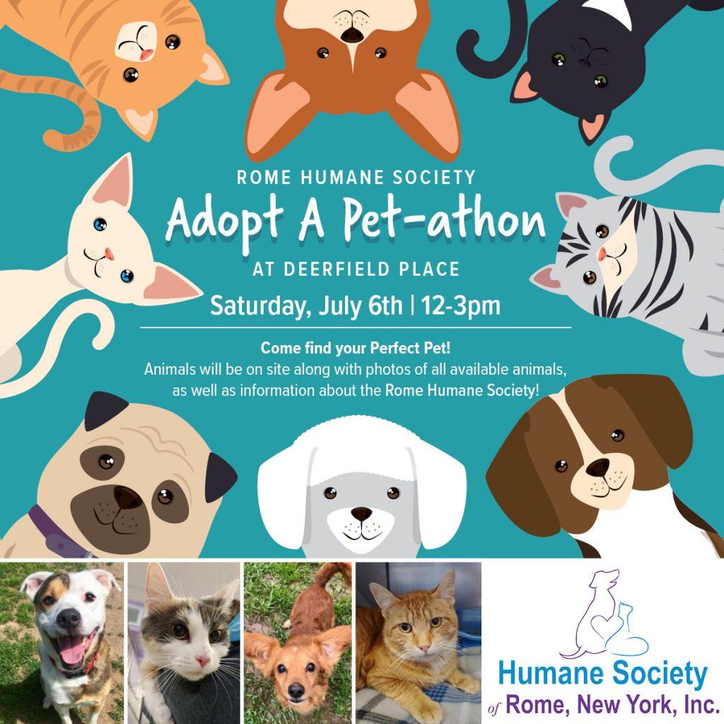 Deerfield Place Adopt A Pet-athon @ Deerfield Place