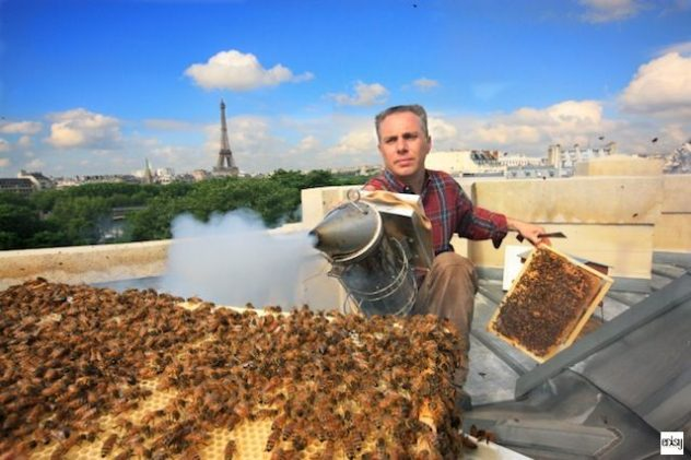 nicolas-geant-urban-beekeeping-grand-palais-untapped-cities