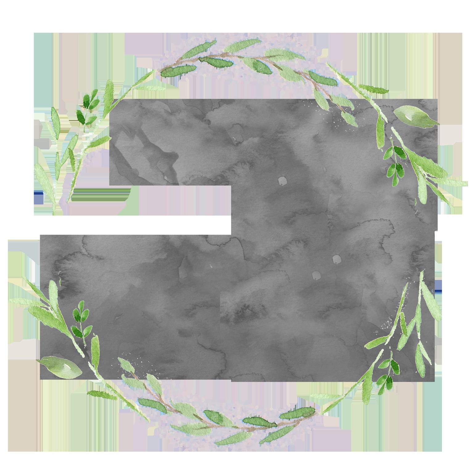 The Organic Beautique