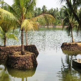 Karsagod Backwaters