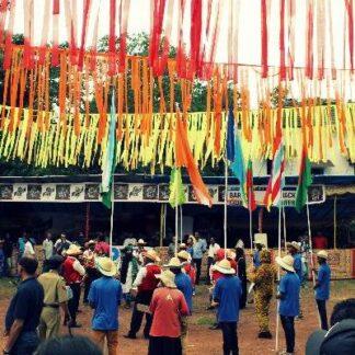 Bonderma Festival Divar Island