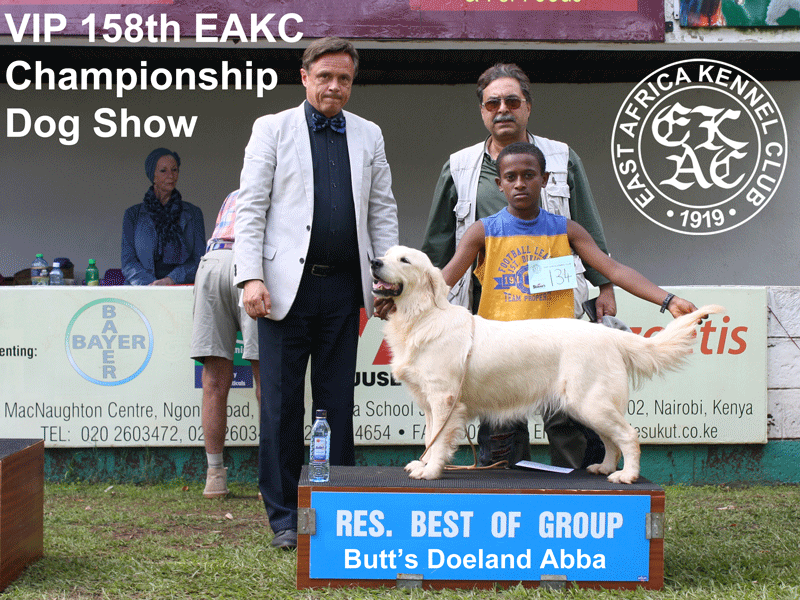 Reserve Best in Gundog Group at the 158th EAKC Championship Dog Show