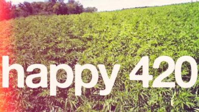 Photo of Why Kenyans On Social Media Are Taking Part In Celebrating 'Happy 420'