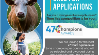 Photo of Call For Applications : 47 Champions Award