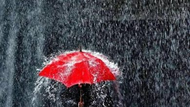 Photo of 5 Amazing Facts About Rain That Most People Do Not Know