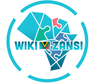 5 Reasons Why Wiki Mzansi Is A Game Changer For African Profiles