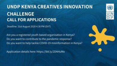 Photo of UNDP Kenya Creative Innovation Challenge – Call For Applications
