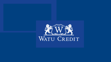 Photo of Internship Opportunity Open At Watu Credit