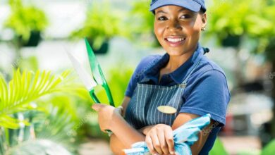 Photo of Gardener Vacancy Open At Kilimani Children's Clinic