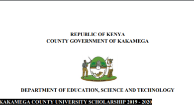 Photo of Application Open – Kakamega County University Scholarship