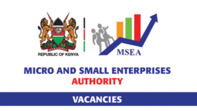 Photo of 2021 Internship Opportunity Open At Micro and Small Enterprises Authority (MSEA)