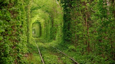 Photo of 21 Unbelievable Places That Are Hard To Believe Really Exist