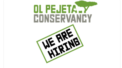 Photo of Internship Opportunity Open At Ol Pejeta