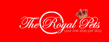 Photo of Royal Pets Internship Program- Nairobi
