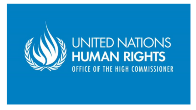 Photo of Internship Opportunity Open At United Nations