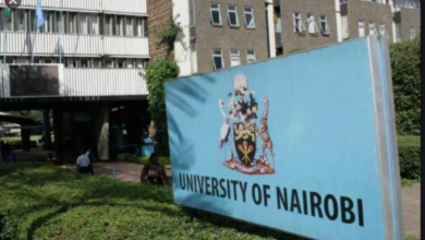 Photo of Top 20 Best Public Universities In Kenya By 2020