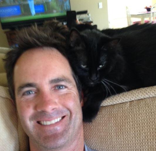 Long Haired Black Cat For Adoption Palm Desert