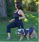 pet fitness programs
