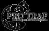 Pro-Trap-Logo Pro Trap Animal Removal & Pest Control in Southwestern Ontario