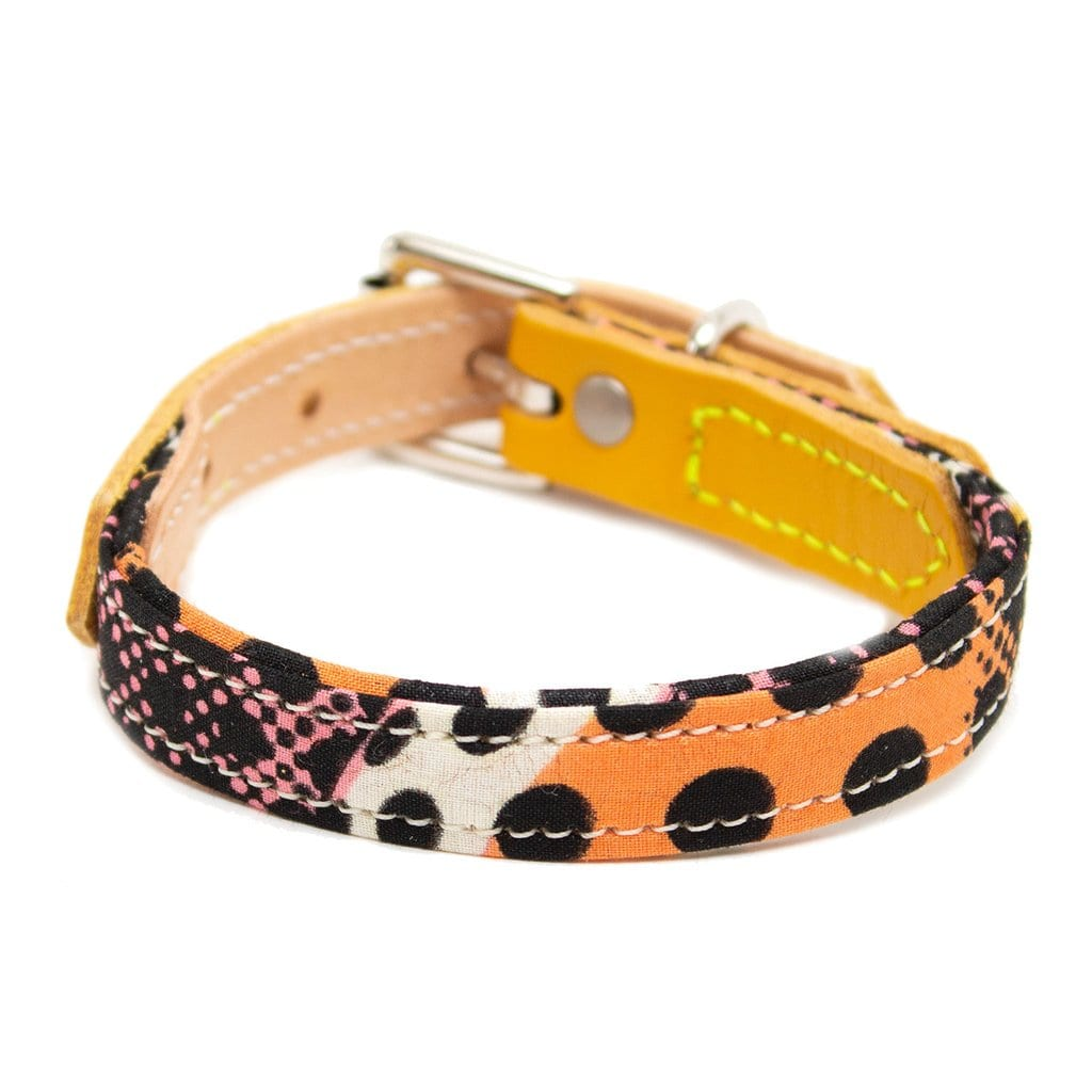 best summer dog leashes