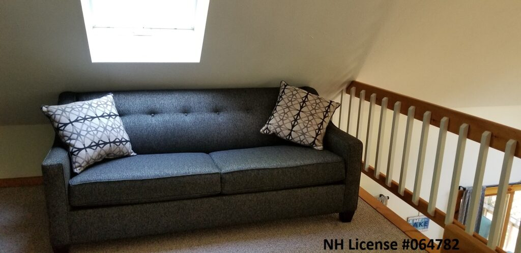 Loft Pullout Couch
