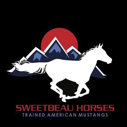 Sweetbeau-Horse-Black-without-flag