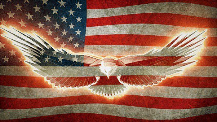 imagew usa flag with bald eagle flying