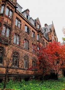 Yale Campus, by Francisco Anzola