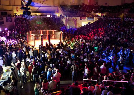 MMA FIGHT