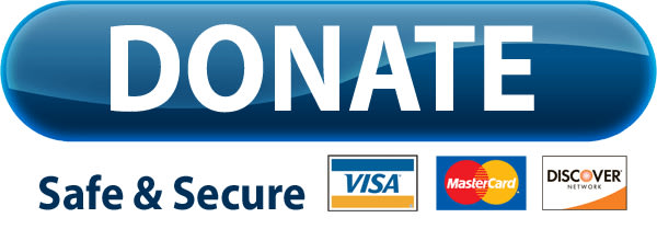create-paypal-donate-button-of-paypal