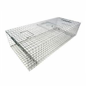 pigeon trap two door