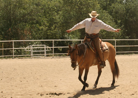 CERTAIN ASPECTS OF THE HORSE'S NATURE AND WHAT THEY SHOULD MEAN TO THE RIDER