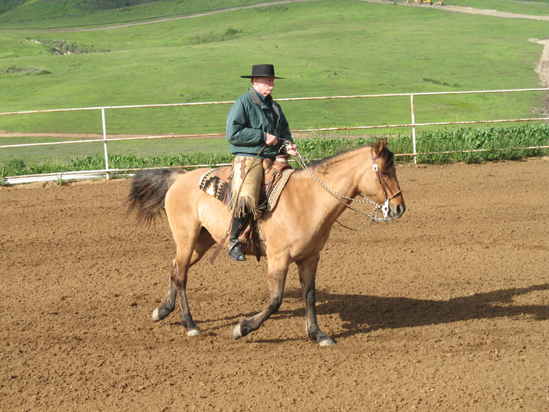 SOME THINGS TO CONSIDER ABOUT THE HORSE (AND YOURSELF) AS THEY RELATE TO DEVELOPING KINSHIP