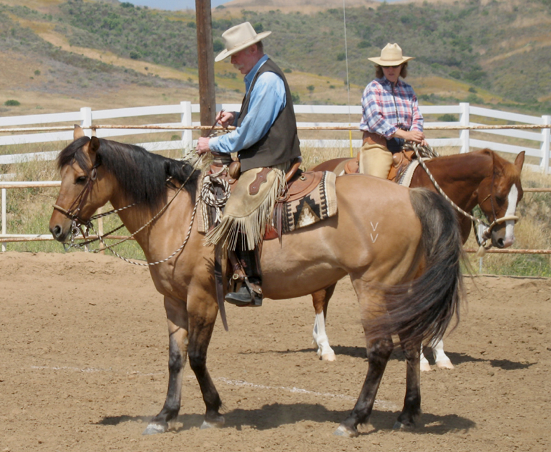 TEN IMPORTANT THINGS TO REMEMBER WHEN SCHOOLING HORSES