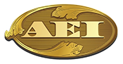 Read More About AEI