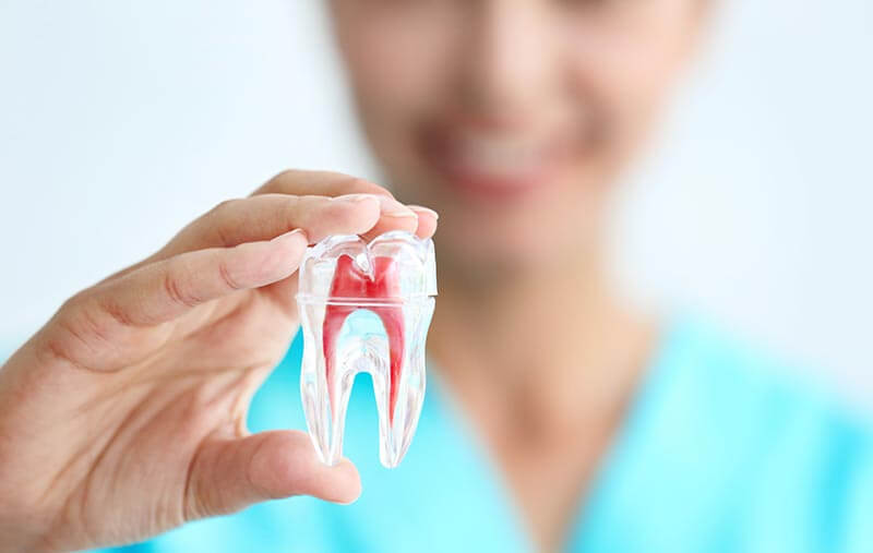 Quality Endodontics Service Phoenix AZ