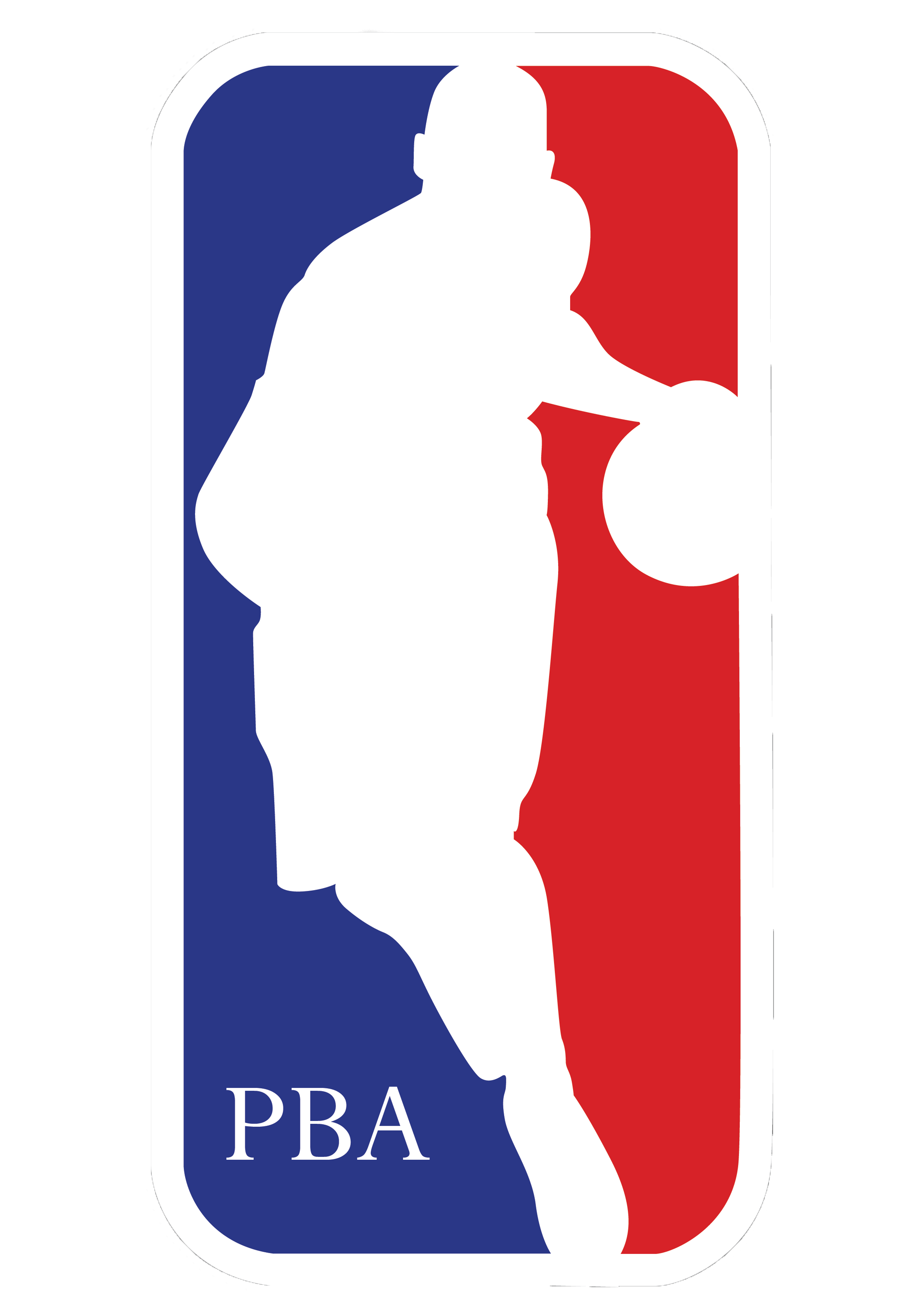 Pro Basketball Association LLC
