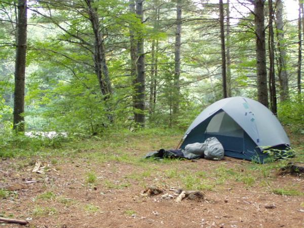 Eleven tips to protect your campsite this summer