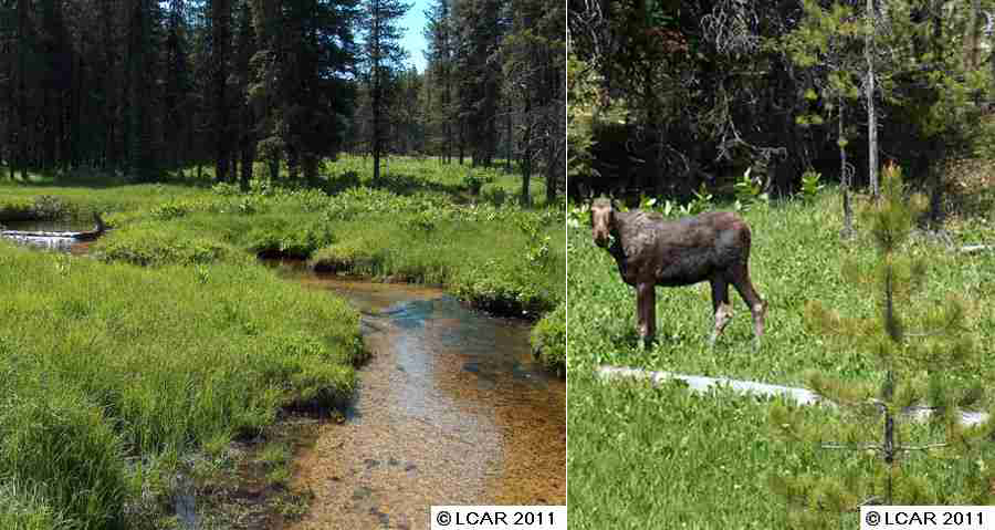 Idaho Backcountry Recreational Property