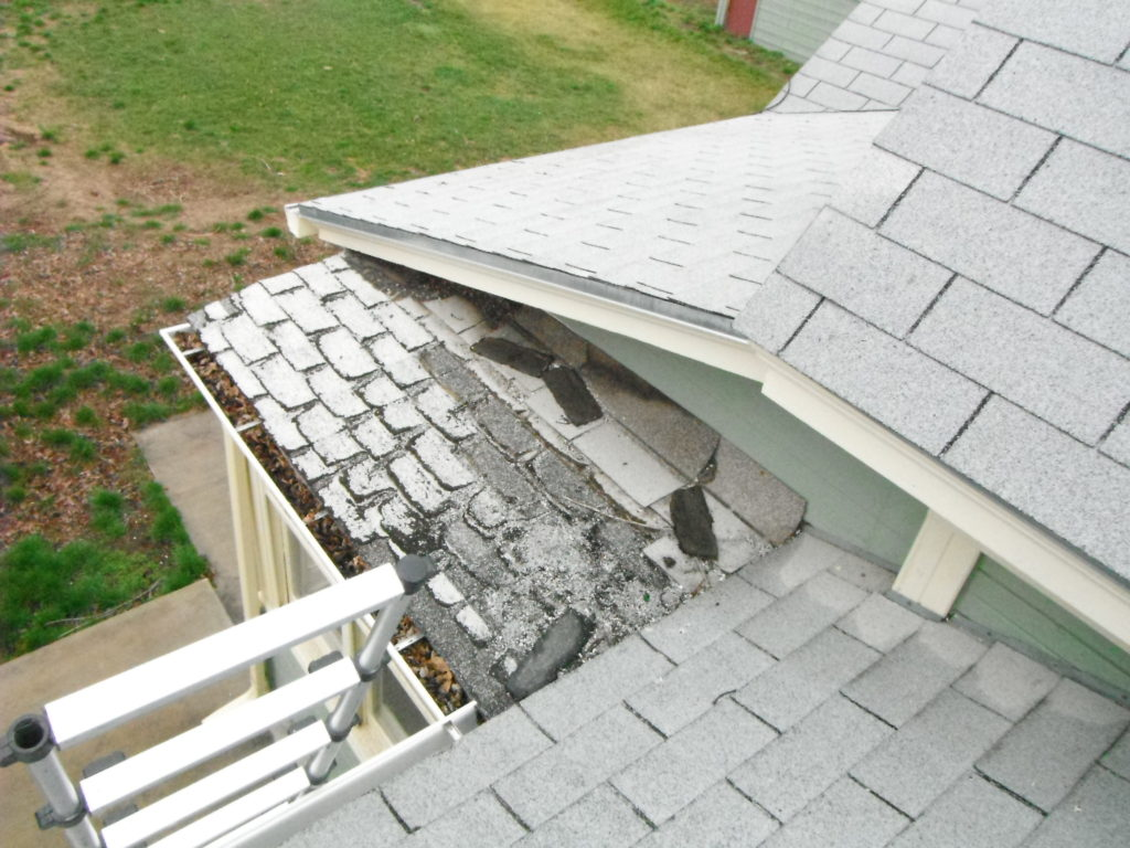 i-guess-the-roofers-missed-a-spot