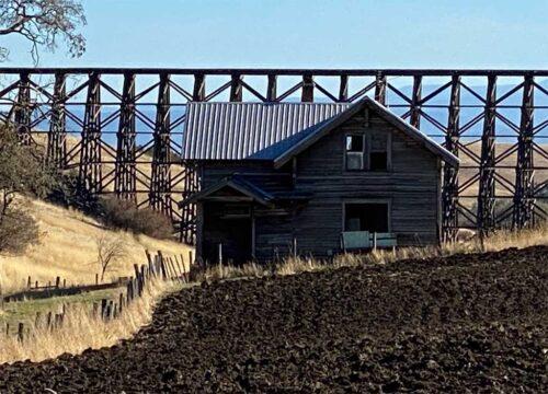 Old Bruegemann House Cottonwood - Ferdinand Idaho