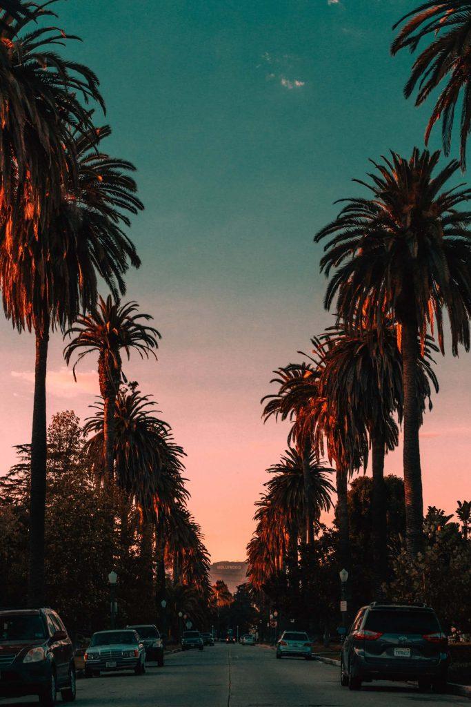 Edenhaus-Lexington-Los-Angeles-Santa-Monica-Blvd