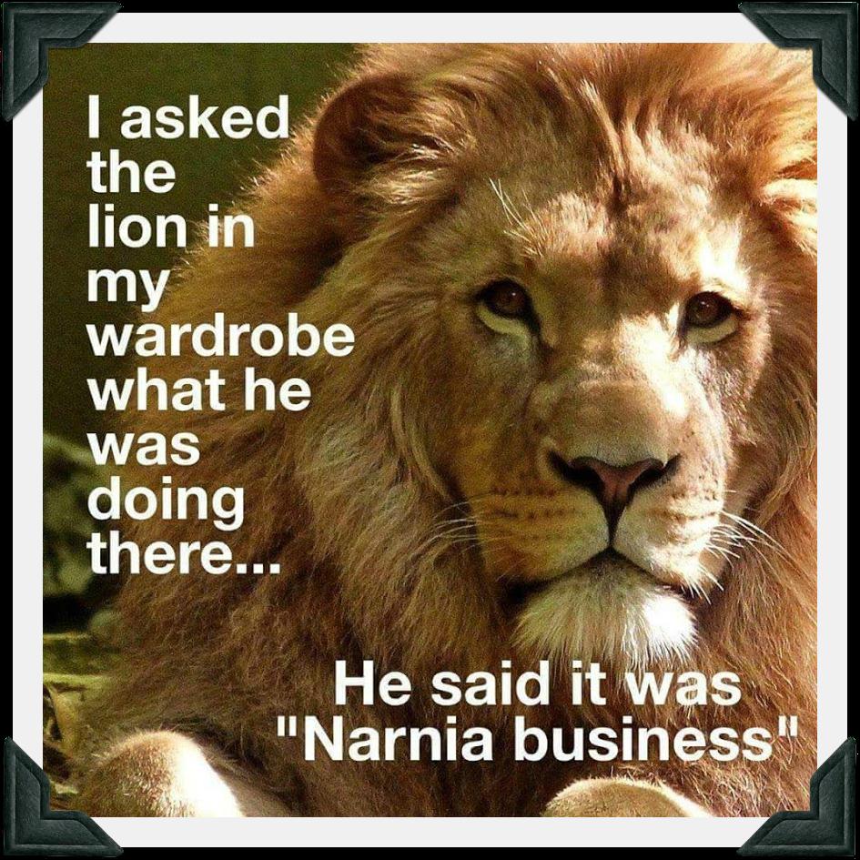 Narnia Business