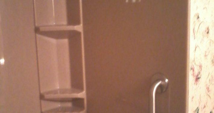 Wolfe Onyx shower tub grab bar