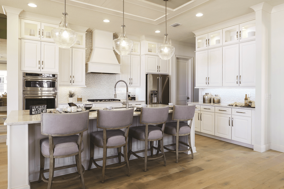 Presidential Kitchen Remodel 2020