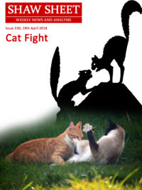 Cover Page Cat Fight Issue 150