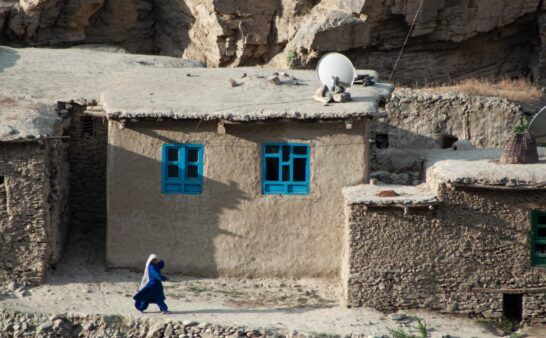 Issue 291: 2021 09 02: Voices of the Taliban Where now for Afghanistan?