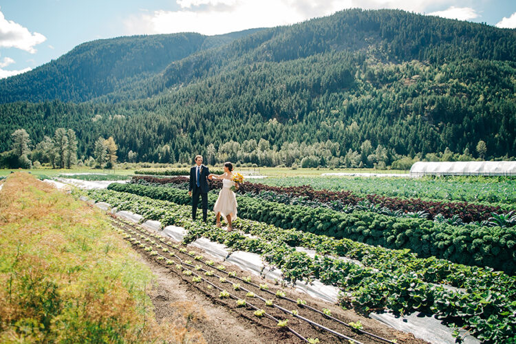 Farm Wedding Pemberton BC