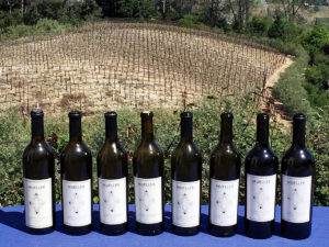 mueller-family-cabernet-sauvignon-wine-bottles