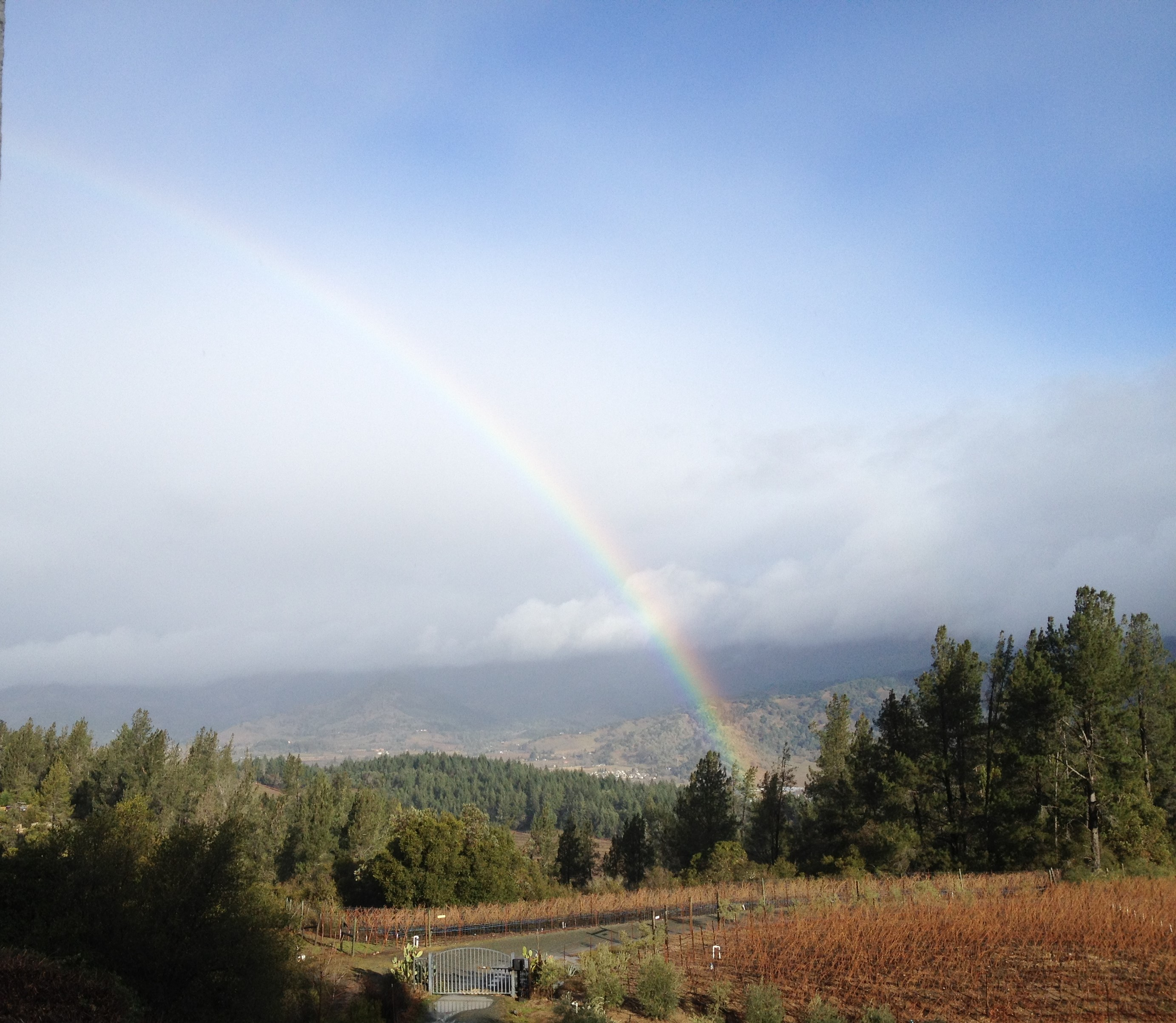 mueller family vineyards rainbow